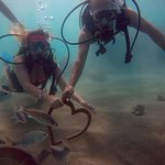 Fotografia no fundo do mar com direito a peixes e coração!