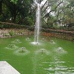 ภาพถ่ายของ สวนเกาลูน