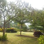 Landscape - Baan Ing Khao Picture