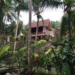 Photo of Warung Pulau Kelapa