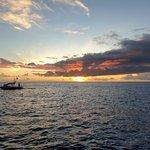 Photo of Big Island Divers