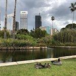 The Royal Botanic Garden Foto