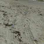 Foto Ochheuteal Beach