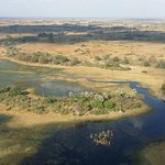 Okavango Delta Image