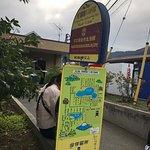 Lake Kawaguchiko ภาพถ่าย
