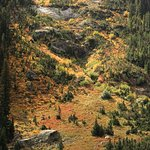 Fall Colors in Cascade Canyon, Grand Teton National Park.