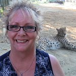 There's plexi-glass between me & the cheetah.