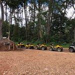 莫雷阿岛ATV之旅照片