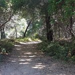 Φωτογραφία: Wilder Ranch State Park