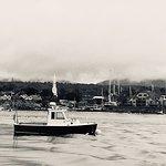 Photo of Camden Harbor Cruises