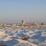 White desert camp Safari