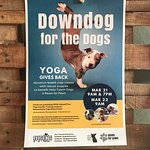 Donation class to benefit dogs in need