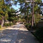 Saidaiji Temple照片