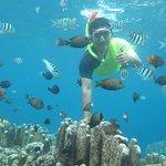 one of the snorkling underwater spot