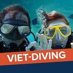 Viet diving