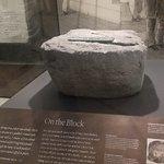 Foto Museum Nasional Sejarah Alam Smithsonian