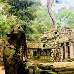 Angkor Cobra Tour Foto