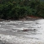 ภาพถ่ายของ Perunthenaruvi Waterfall