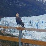 Foto di Parque Nacional Los Glaciares