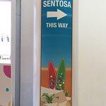 ภาพถ่ายของ เซนโตซ่า เอ็กเพรสซ์