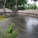 Under-construction pool area , breeding ground for scores of mosquitoes!!