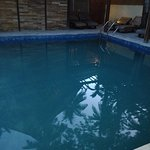 Ill maintained supposed pool - with construction debris and mosquitoes