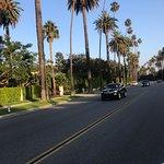 Foto de Rodeo Drive