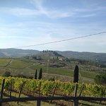Bilde fra Castello Vicchiomaggio