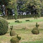 Photo de Les Jardins du Manoir d'Eyrignac