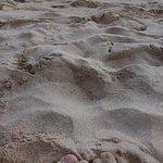 Zdjęcie Spiaggia Pescoluse