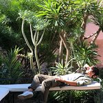 Le Jardin Secret Foto