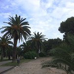 Photo of Parc de Montjuic