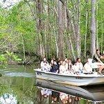 Eco Swamp Boat Tour