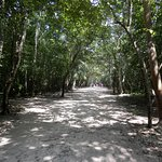 Bilde fra Tulum mayaruiner