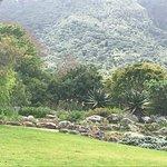 Foto de Kirstenbosch National Botanical Garden