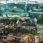 Chuen Kee Seafood Restaurant의 사진