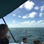 Billede af Catamaran Echo