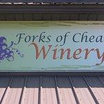 Bild från Forks of Cheat Winery