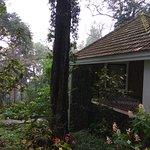 Entrance - The Tall Trees Munnar Photo