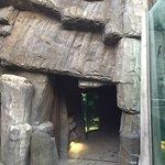 صورة فوتوغرافية لـ Prague Zoo