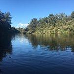 Photo of Waiatoto River Safari