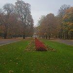 Φωτογραφία: Saxon Gardens