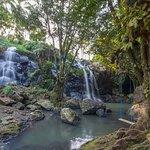 Landscape - Bali Green Retreat & Spa Photo