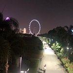 ภาพถ่ายของ Supertree Grove