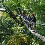 safe and scary rope bridges