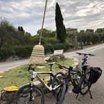Фотография Tuscan Escapes - Day Tours