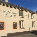 Zdjęcie The Leaping Salmon