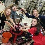 Zagreus Winery Photo
