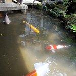 ภาพถ่ายของ Nomura Family Samurai House