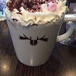 Moose Coffee Foto